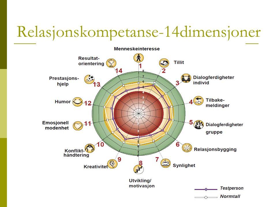Relasjonskompetanse-14dimensjoner