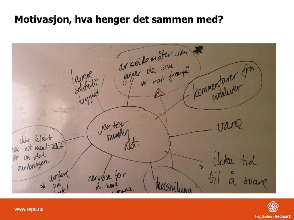 Motivasjon, hva henger det sammen med www.sepu.no