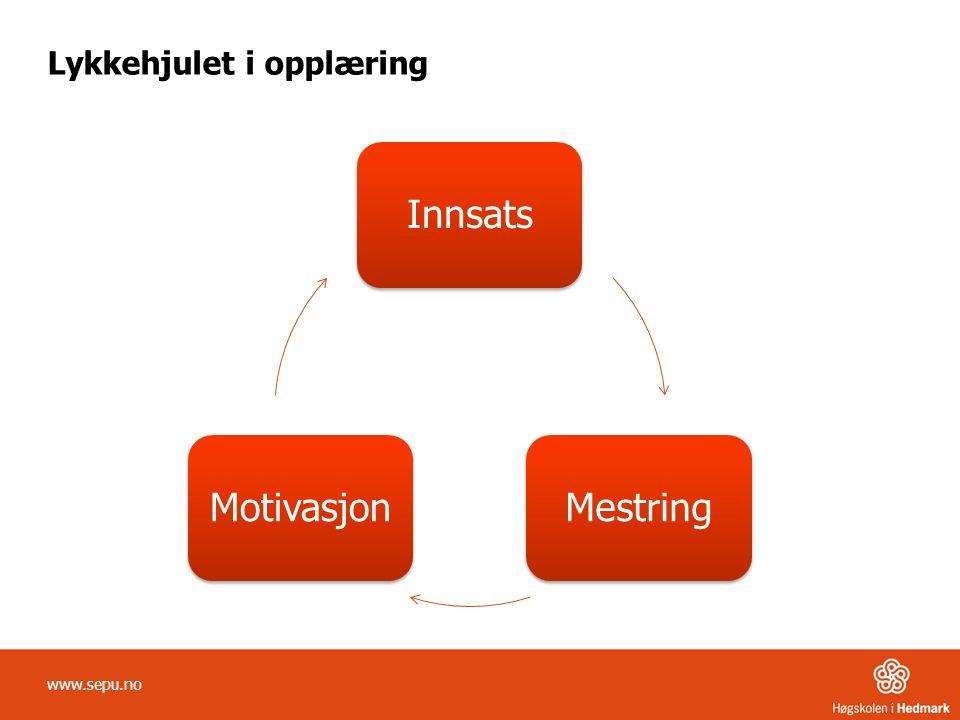 Lykkehjulet i opplæring InnsatsMestringMotivasjon www.sepu.no