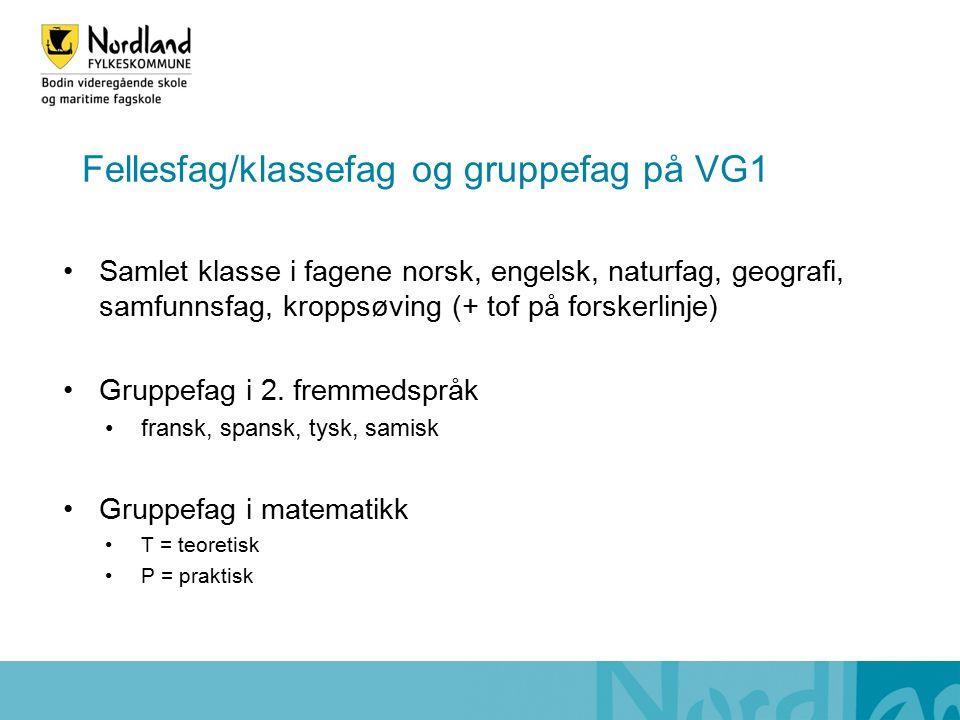 Fellesfag/klassefag og gruppefag på VG1 Samlet klasse i fagene norsk, engelsk, naturfag, geografi, samfunnsfag, kroppsøving (+ tof på forskerlinje) Gruppefag i 2.