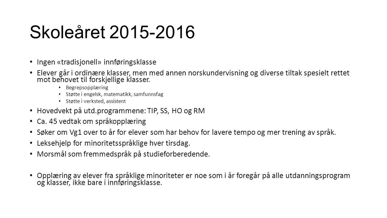 Skoleåret 2015-2016 Ingen «tradisjonell» innføringsklasse Elever går i ordinære klasser, men med annen norskundervisning og diverse tiltak spesielt rettet mot behovet til forskjellige klasser.