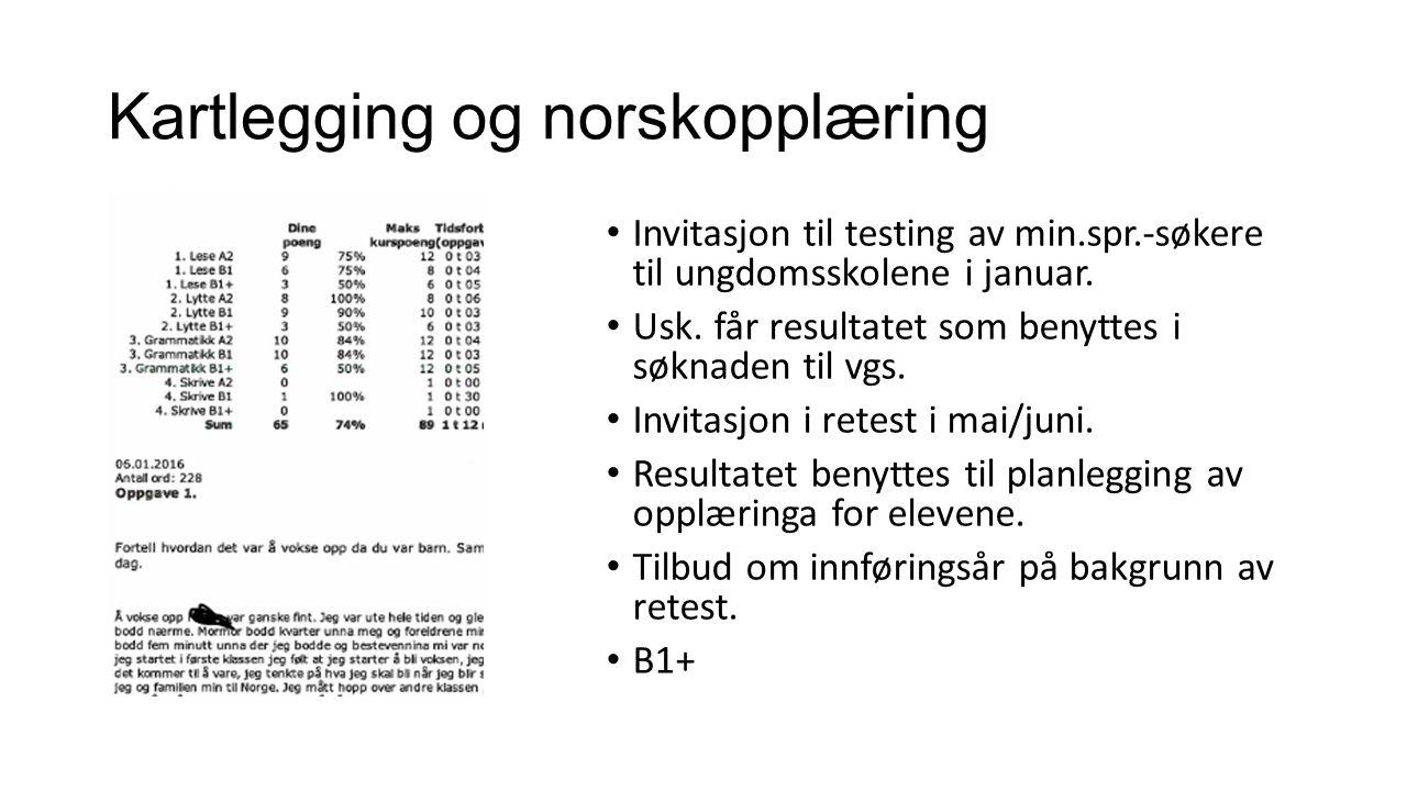 Kartlegging og norskopplæring Invitasjon til testing av min.spr.-søkere til ungdomsskolene i januar.