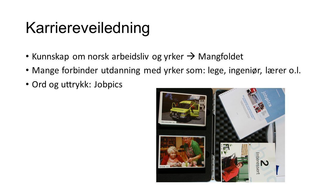 Karriereveiledning Kunnskap om norsk arbeidsliv og yrker  Mangfoldet Mange forbinder utdanning med yrker som: lege, ingeniør, lærer o.l.