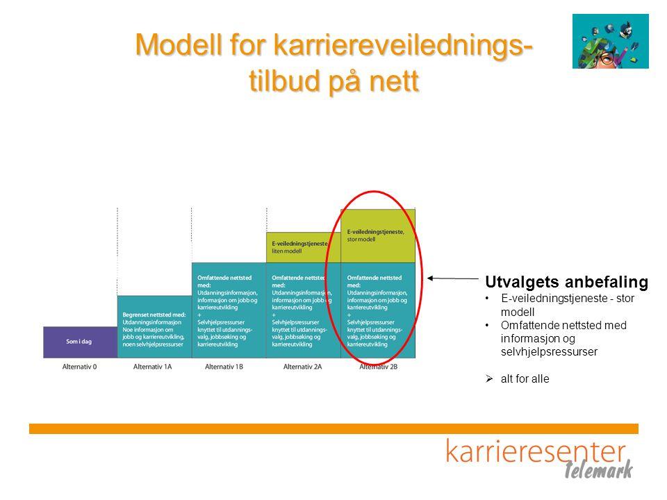 Modell for karriereveilednings- tilbud på nett Utvalgets anbefaling E-veiledningstjeneste - stor modell Omfattende nettsted med informasjon og selvhjelpsressurser  alt for alle