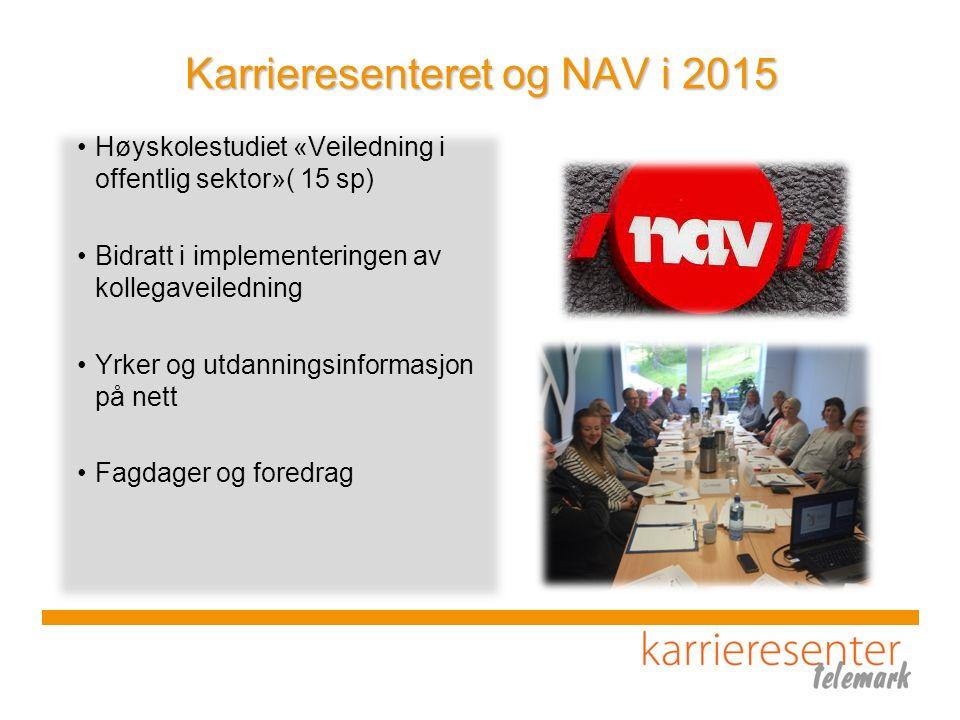 Karrieresenteret og NAV i 2015 Høyskolestudiet «Veiledning i offentlig sektor»( 15 sp) Bidratt i implementeringen av kollegaveiledning Yrker og utdanningsinformasjon på nett Fagdager og foredrag