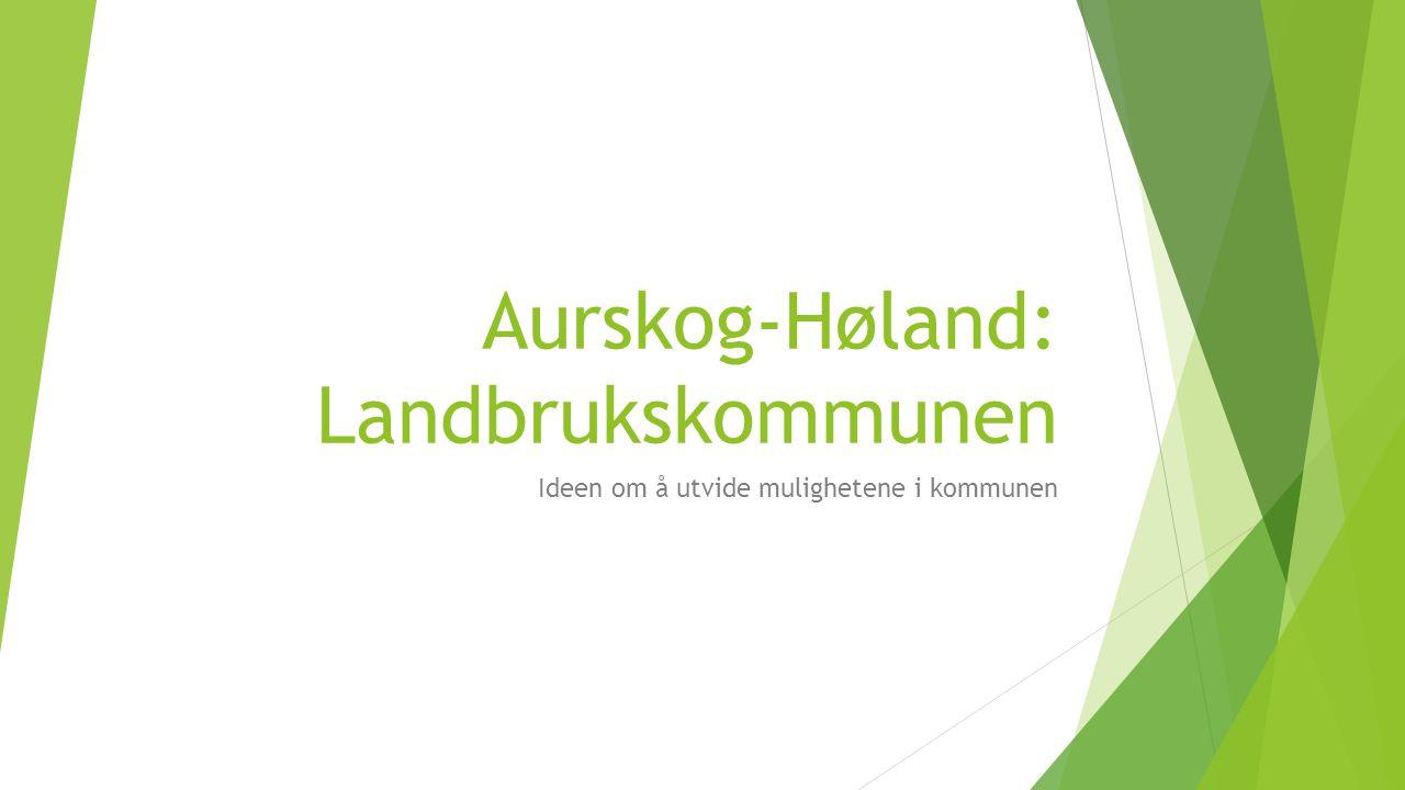 Aurskog-Høland: Landbrukskommunen Ideen om å utvide mulighetene i kommunen