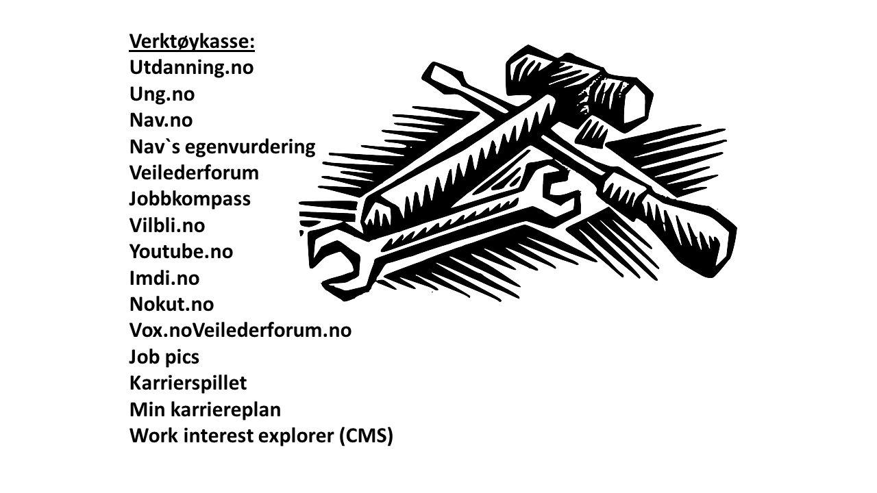 Verktøykasse: Utdanning.no Ung.no Nav.no Nav`s egenvurdering Veilederforum Jobbkompass Vilbli.no Youtube.no Imdi.no Nokut.no Vox.noVeilederforum.no Jo