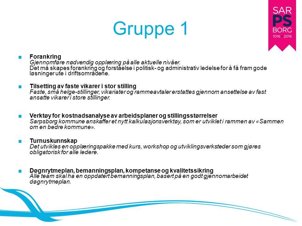Gruppe 1 ■Forankring Gjennomføre nødvendig opplæring på alle aktuelle nivåer.