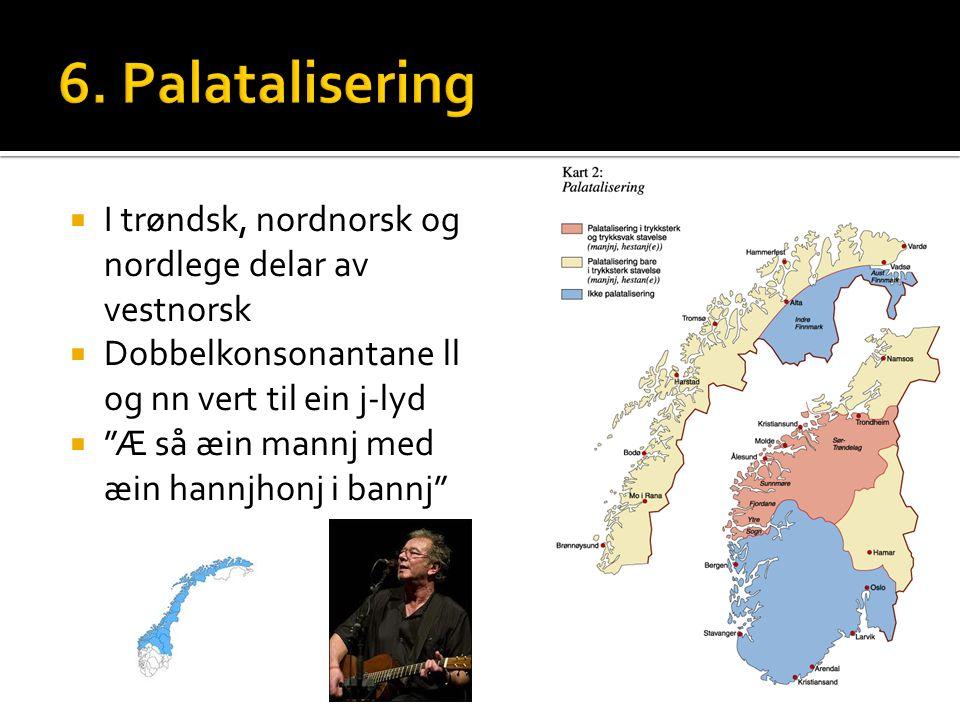  I trøndsk, nordnorsk og nordlege delar av vestnorsk  Dobbelkonsonantane ll og nn vert til ein j-lyd  Æ så æin mannj med æin hannjhonj i bannj