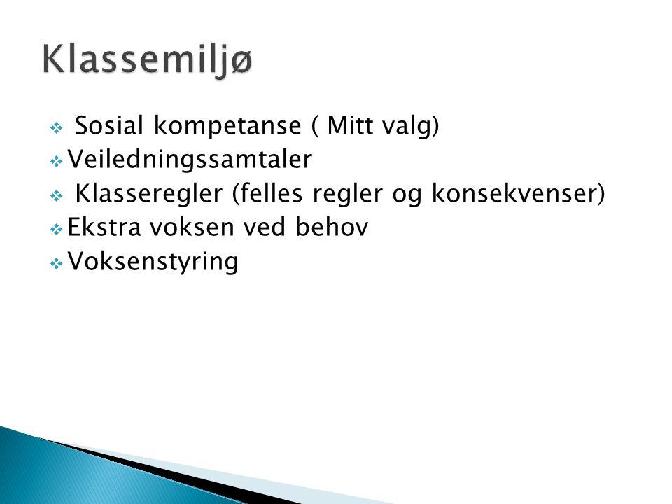  Sosial kompetanse ( Mitt valg)  Veiledningssamtaler  Klasseregler (felles regler og konsekvenser)  Ekstra voksen ved behov  Voksenstyring