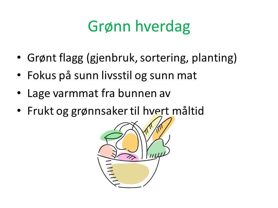 Grønn hverdag Grønt flagg (gjenbruk, sortering, planting) Fokus på sunn livsstil og sunn mat Lage varmmat fra bunnen av Frukt og grønnsaker til hvert måltid