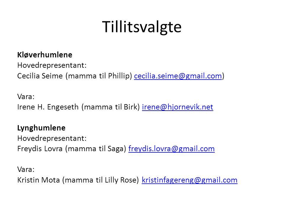 Tillitsvalgte Kløverhumlene Hovedrepresentant: Cecilia Seime (mamma til Phillip) cecilia.seime@gmail.com)cecilia.seime@gmail.com Vara: Irene H.