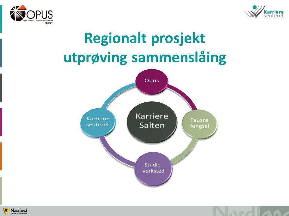 Regionalt prosjekt utprøving sammenslåing