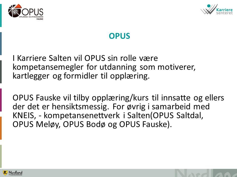 OPUS I Karriere Salten vil OPUS sin rolle være kompetansemegler for utdanning som motiverer, kartlegger og formidler til opplæring.
