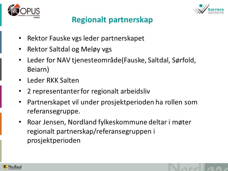 Rektor Fauske vgs leder partnerskapet Rektor Saltdal og Meløy vgs Leder for NAV tjenesteområde(Fauske, Saltdal, Sørfold, Beiarn) Leder RKK Salten 2 representanter for regionalt arbeidsliv Partnerskapet vil under prosjektperioden ha rollen som referansegruppe.