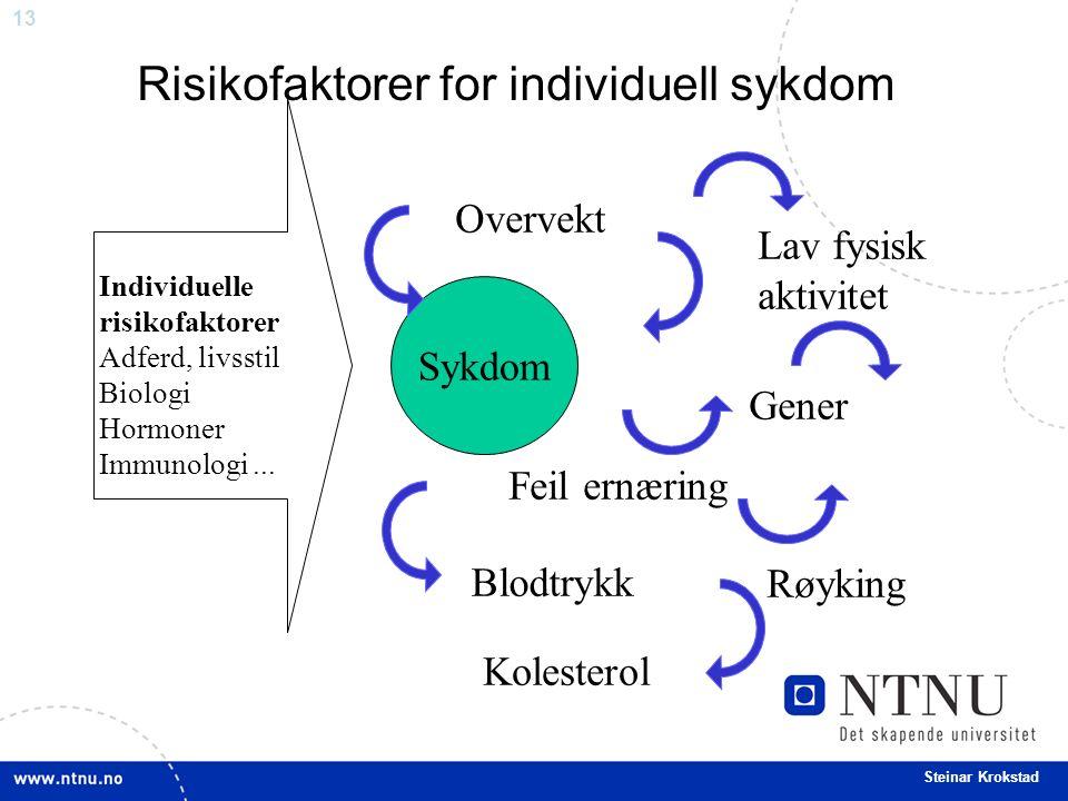 13 Steinar Krokstad Risikofaktorer for individuell sykdom Individuelle risikofaktorer Adferd, livsstil Biologi Hormoner Immunologi... Sykdom Blodtrykk
