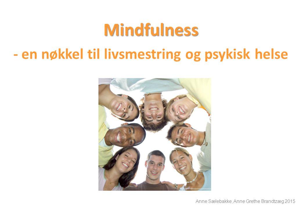 Mindfulness - en nøkkel til livsmestring og psykisk helse Anne Sælebakke, Anne Grethe Brandtzæg 2015