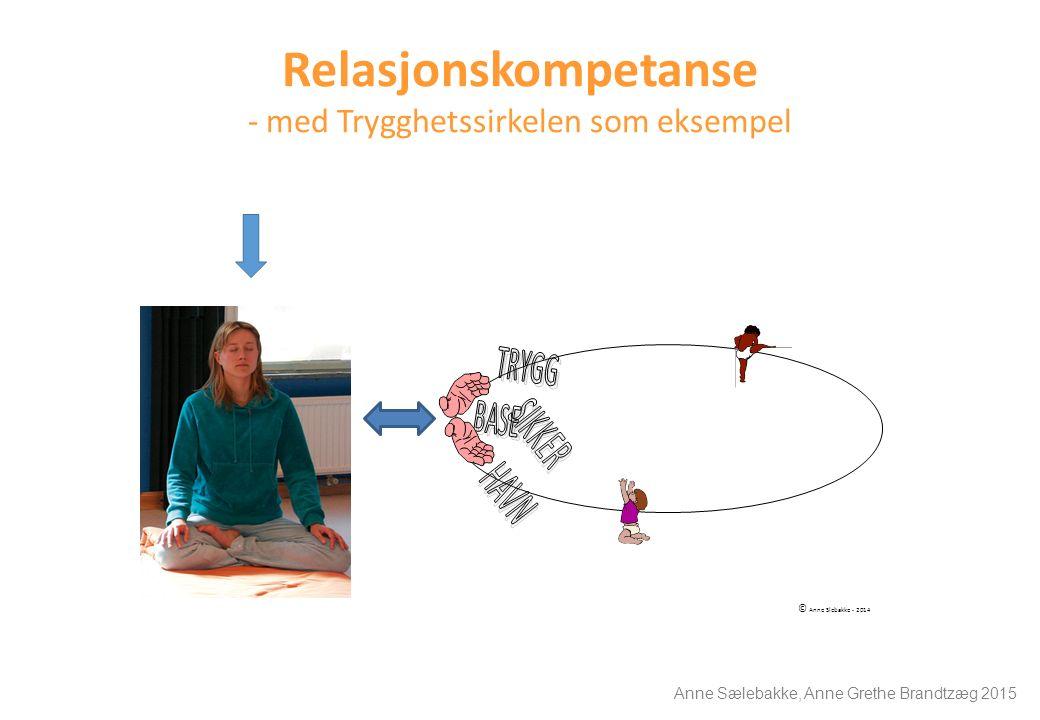 Relasjonskompetanse - med Trygghetssirkelen som eksempel © Anne Slebakke - 2014 Anne Sælebakke, Anne Grethe Brandtzæg 2015