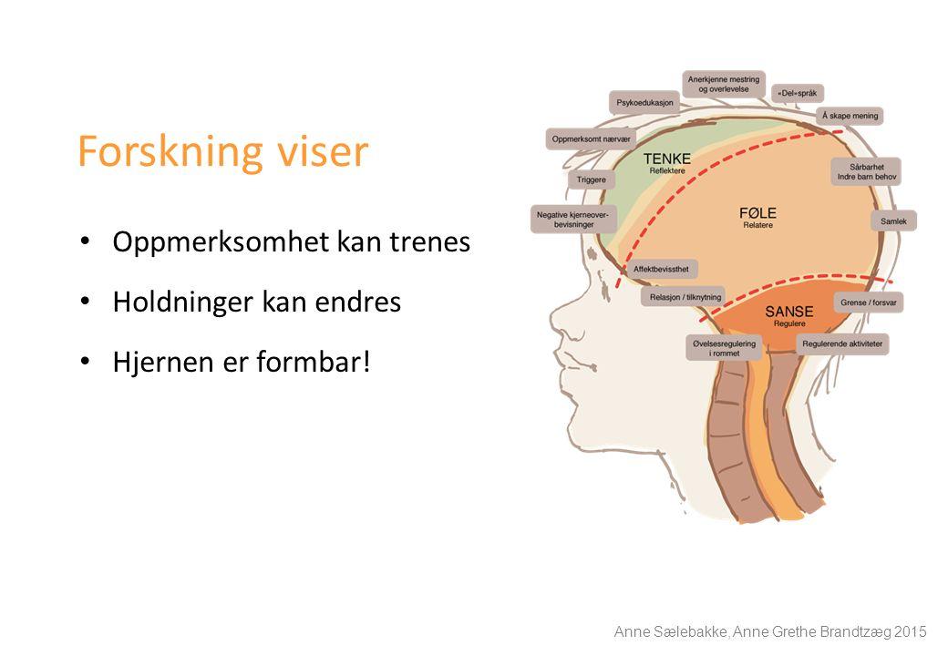 Forskning viser Oppmerksomhet kan trenes Holdninger kan endres Hjernen er formbar! Anne Sælebakke, Anne Grethe Brandtzæg 2015