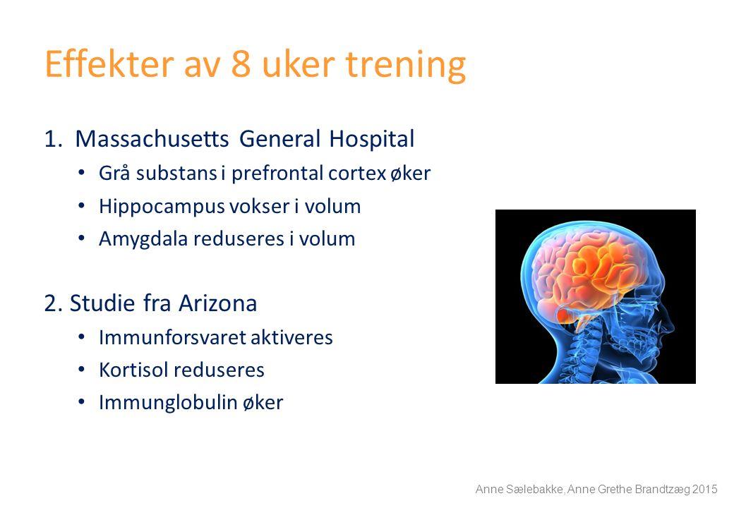 Effekter av 8 uker trening 1.Massachusetts General Hospital Grå substans i prefrontal cortex øker Hippocampus vokser i volum Amygdala reduseres i volu