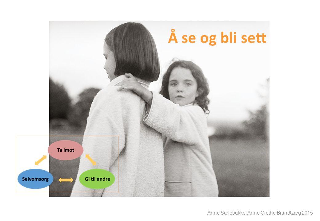 Å se og bli sett Anne Sælebakke, Anne Grethe Brandtzæg 2015