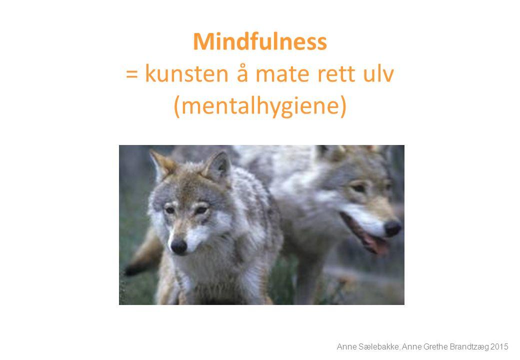 Mindfulness = kunsten å mate rett ulv (mentalhygiene) Anne Sælebakke, Anne Grethe Brandtzæg 2015