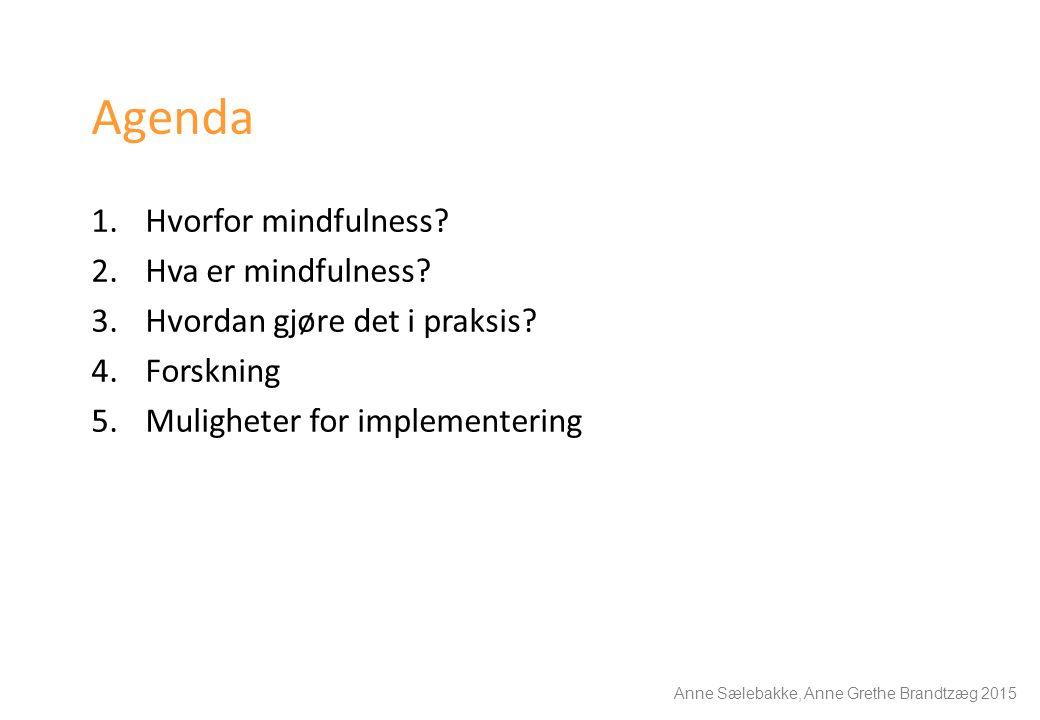 Agenda 1.Hvorfor mindfulness? 2.Hva er mindfulness? 3.Hvordan gjøre det i praksis? 4.Forskning 5.Muligheter for implementering Anne Sælebakke, Anne Gr