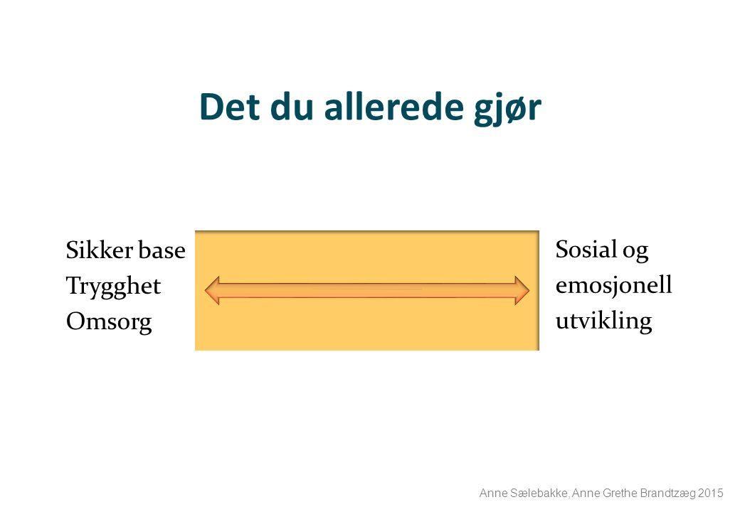 Det du allerede gjør Sosial og emosjonell utvikling Sikker base Trygghet Omsorg Anne Sælebakke, Anne Grethe Brandtzæg 2015
