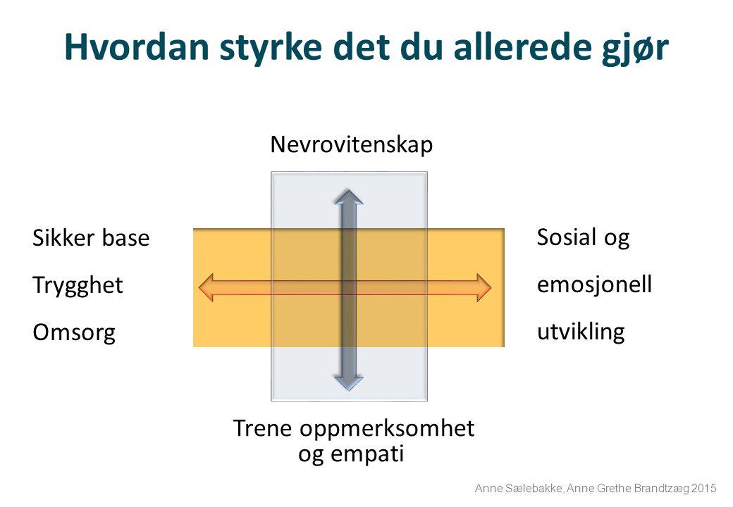 Hvordan styrke det du allerede gjør Sikker base Trygghet Omsorg Nevrovitenskap Trene oppmerksomhet og empati Sosial og emosjonell utvikling Anne Sæleb