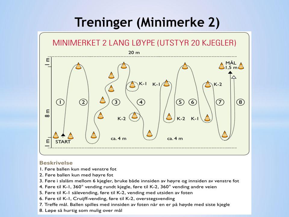 Treninger (Minimerke 2)