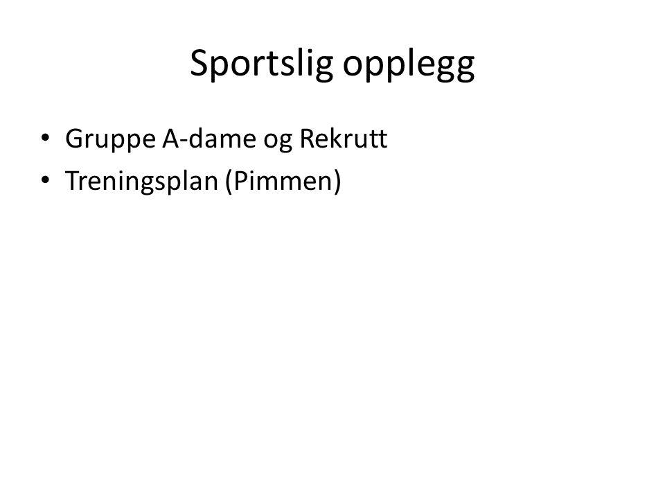 Sportslig opplegg Gruppe A-dame og Rekrutt Treningsplan (Pimmen)