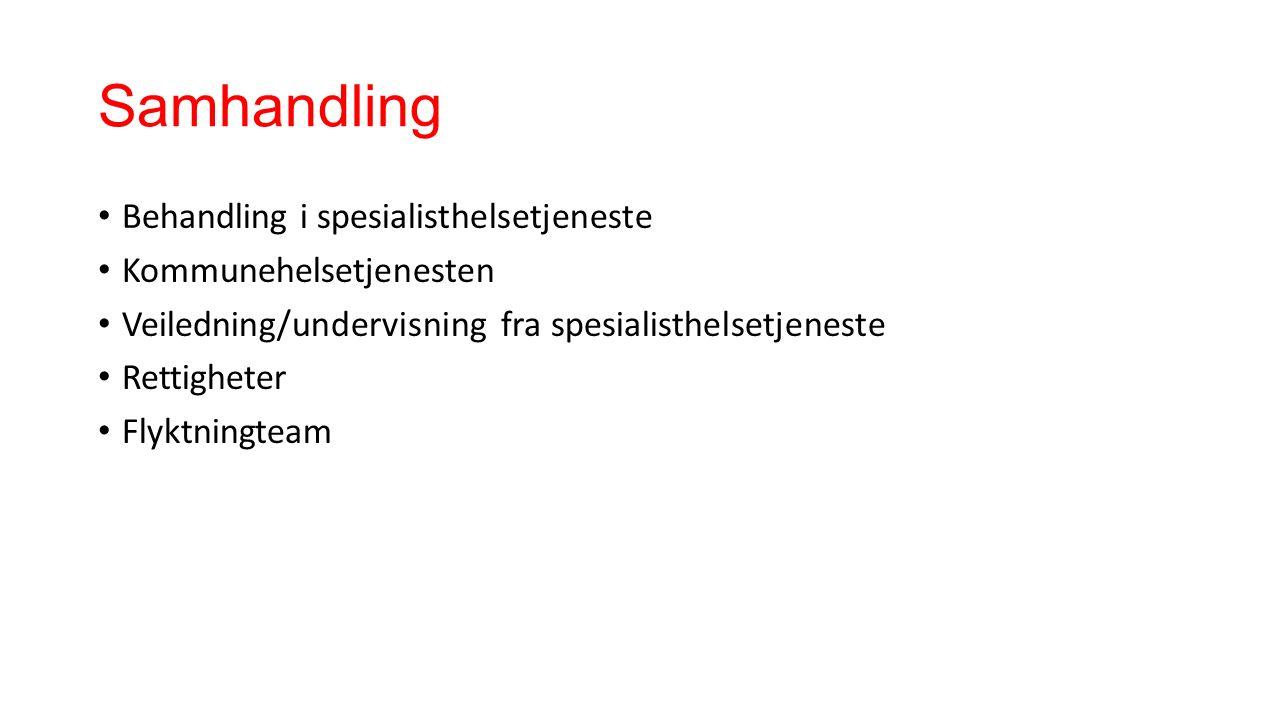 Samhandling Behandling i spesialisthelsetjeneste Kommunehelsetjenesten Veiledning/undervisning fra spesialisthelsetjeneste Rettigheter Flyktningteam