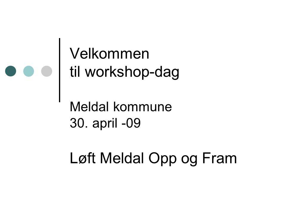 Velkommen til workshop-dag Meldal kommune 30. april -09 Løft Meldal Opp og Fram