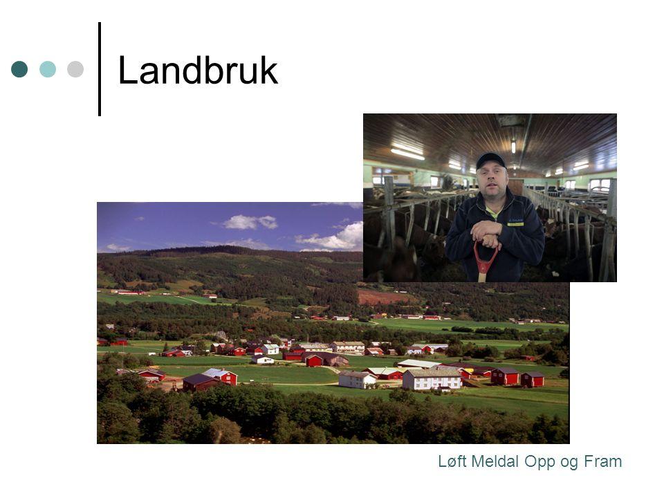Landbruk Løft Meldal Opp og Fram