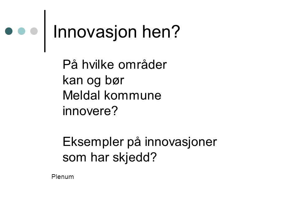 Innovasjon hen? På hvilke områder kan og bør Meldal kommune innovere? Eksempler på innovasjoner som har skjedd? Plenum