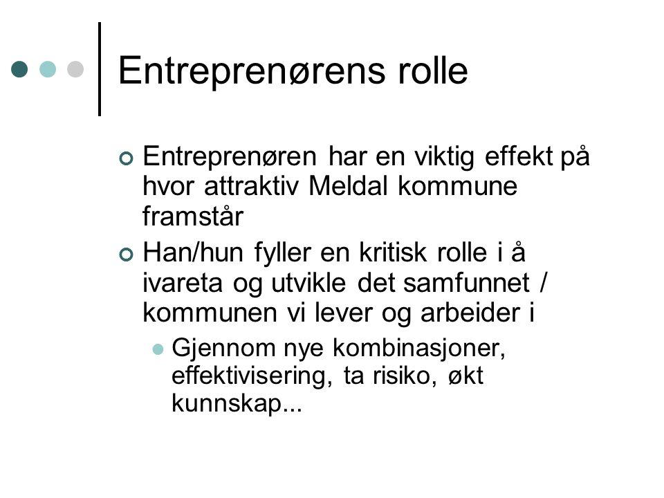 Entreprenørens rolle Entreprenøren har en viktig effekt på hvor attraktiv Meldal kommune framstår Han/hun fyller en kritisk rolle i å ivareta og utvik
