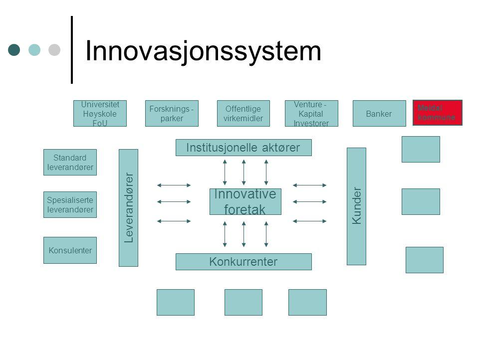 Innovasjonssystem Innovative foretak Institusjonelle aktører Konkurrenter Kunder Leverandører Standard leverandører Spesialiserte leverandører Konsule