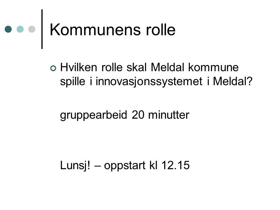 Kommunens rolle Hvilken rolle skal Meldal kommune spille i innovasjonssystemet i Meldal? gruppearbeid 20 minutter Lunsj! – oppstart kl 12.15
