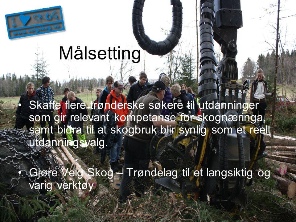 Organisering Prosjekteier: Skognæringa i Trøndelag Prosjektledelse: Skogselskapet i Trøndelag Styringsgruppe: –FMNT –STFK –Skognæringa –Mære landbruksskole Finansiert av RLK-midler og fylkesinntrukne rentemidler i begge Trøndelags-fylkene.