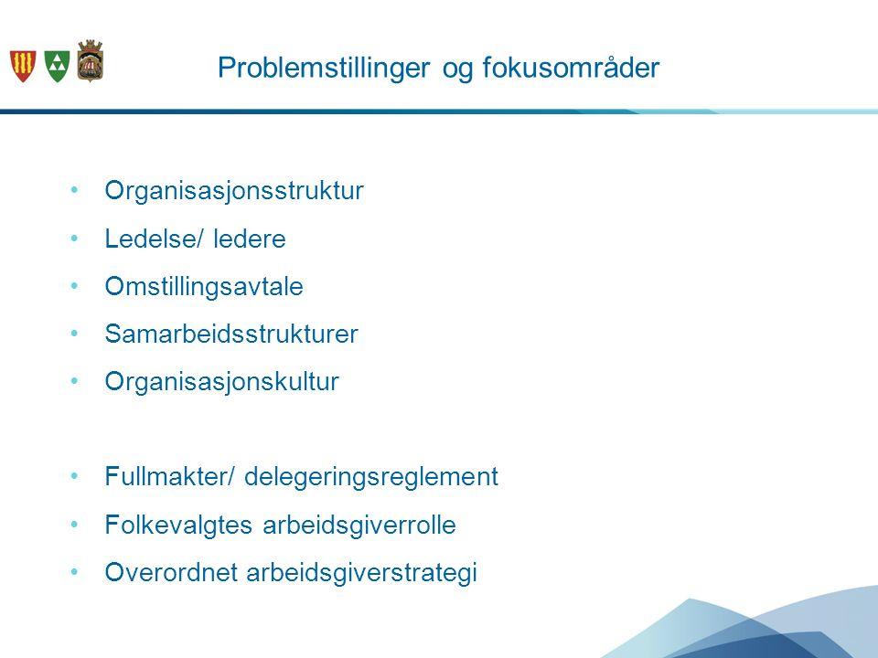 Problemstillinger og fokusområder Organisasjonsstruktur Ledelse/ ledere Omstillingsavtale Samarbeidsstrukturer Organisasjonskultur Fullmakter/ deleger