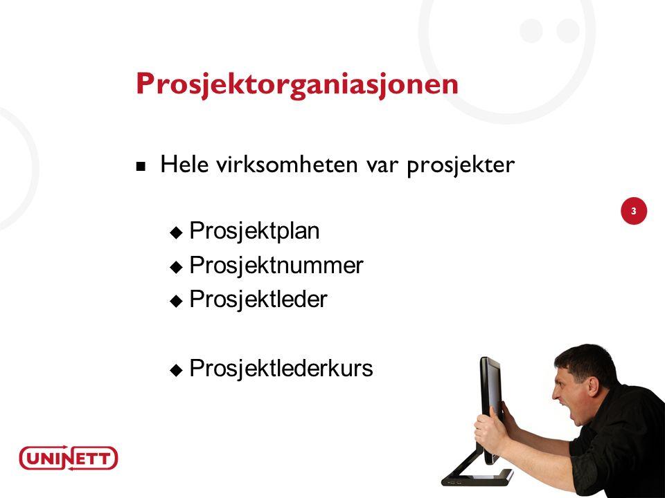 3 Prosjektorganiasjonen Hele virksomheten var prosjekter  Prosjektplan  Prosjektnummer  Prosjektleder  Prosjektlederkurs