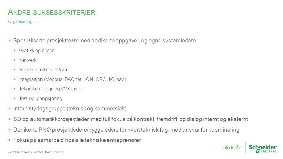 A NDRE SUKSESSKRITERIER Organisering …..