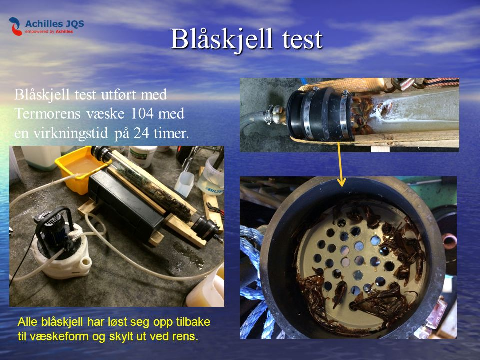 Blåskjell test Blåskjell test Blåskjell test utført med Termorens væske 104 med en virkningstid på 24 timer.