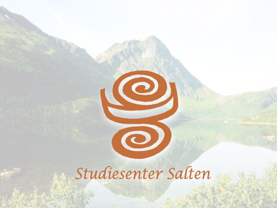 Studiesentrenes rolle Forum for kompetanse og arbeidsliv Saltstraumen 6.-7. november Heidi Meland