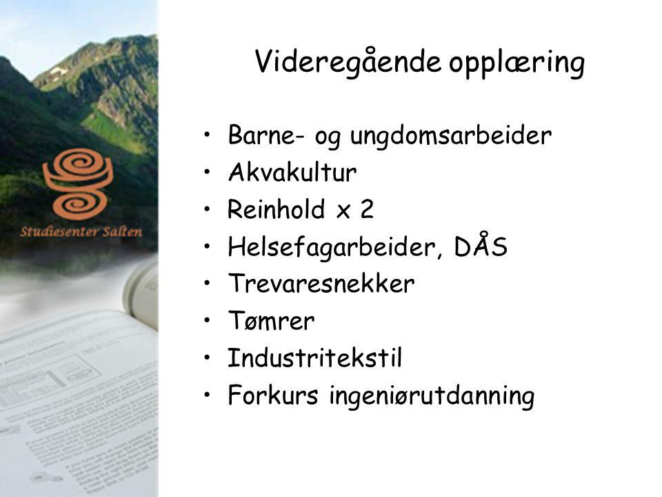 Videregående opplæring Barne- og ungdomsarbeider Akvakultur Reinhold x 2 Helsefagarbeider, DÅS Trevaresnekker Tømrer Industritekstil Forkurs ingeniøru