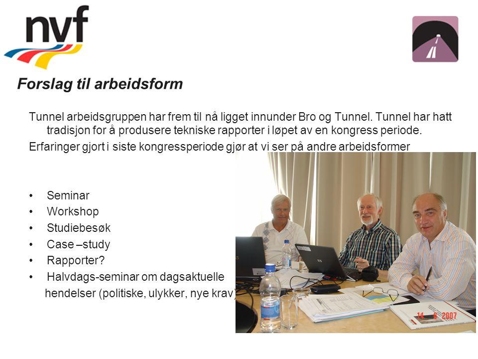 Forslag til arbeidsform Tunnel arbeidsgruppen har frem til nå ligget innunder Bro og Tunnel.