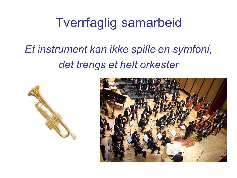 Tverrfaglig samarbeid Et instrument kan ikke spille en symfoni, det trengs et helt orkester