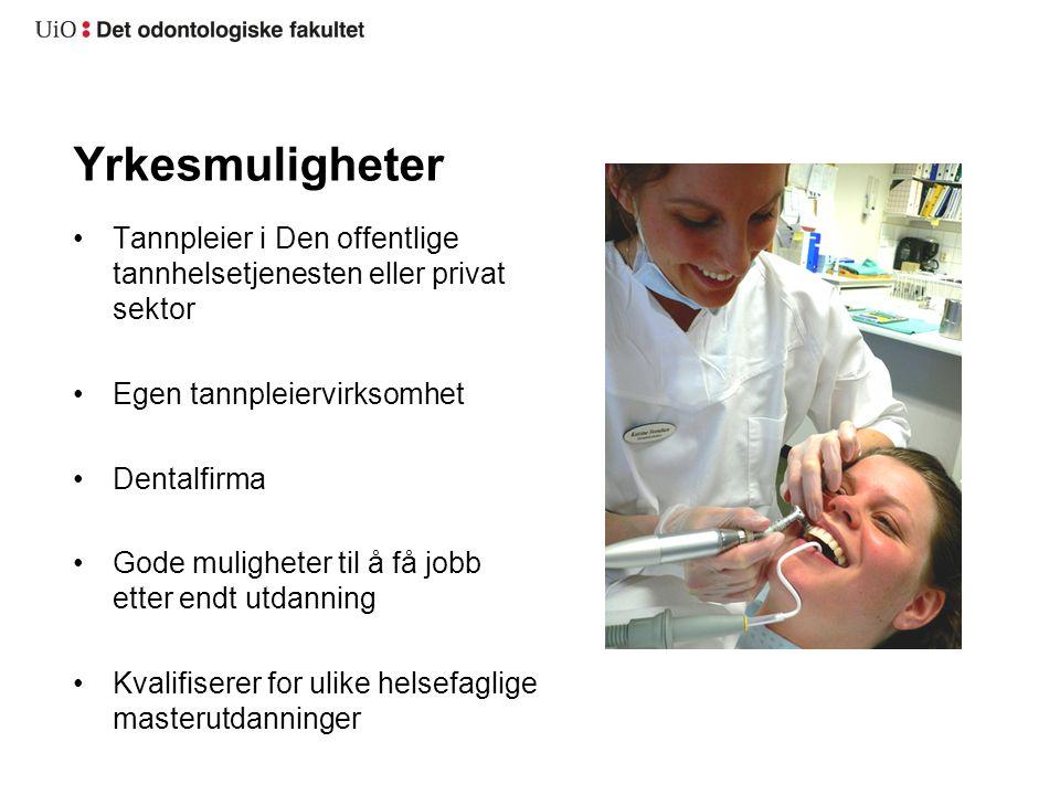 Yrkesmuligheter Tannpleier i Den offentlige tannhelsetjenesten eller privat sektor Egen tannpleiervirksomhet Dentalfirma Gode muligheter til å få jobb etter endt utdanning Kvalifiserer for ulike helsefaglige masterutdanninger