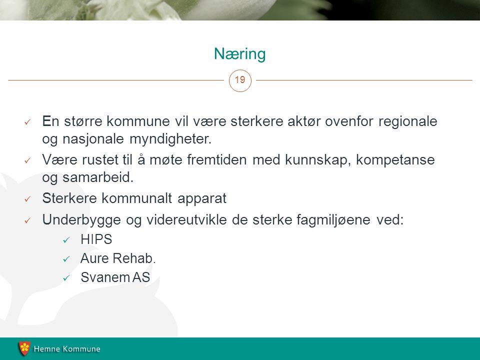 Næring 19 En større kommune vil være sterkere aktør ovenfor regionale og nasjonale myndigheter.