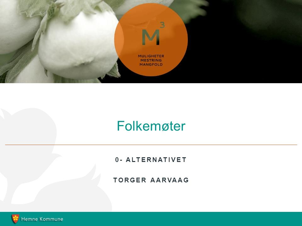0- ALTERNATIVET TORGER AARVAAG Folkemøter